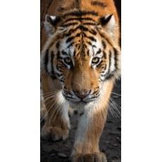 RECZNIK KAPIELOWY PLAZOWY 70 X 140 CM ANIMAL TYGRYS TNL201006-R